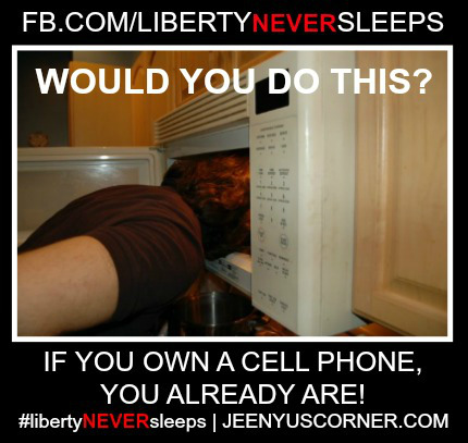 https://jeenyuscorner.files.wordpress.com/2012/10/head-in-a-microwave1.jpg
