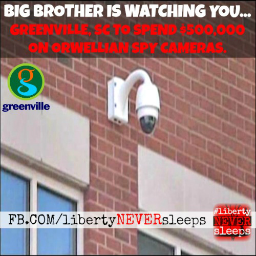 big brother greenville